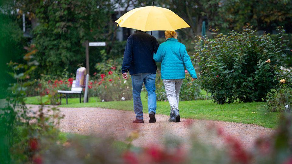 Wetter-Symbolfoto: Ein Paar schlendert mit Regenschirm durchs Rosarium in Uetersen