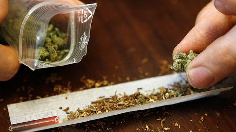 Kein breiter Konsens: Experten streiten um Gras-Legalisierung
