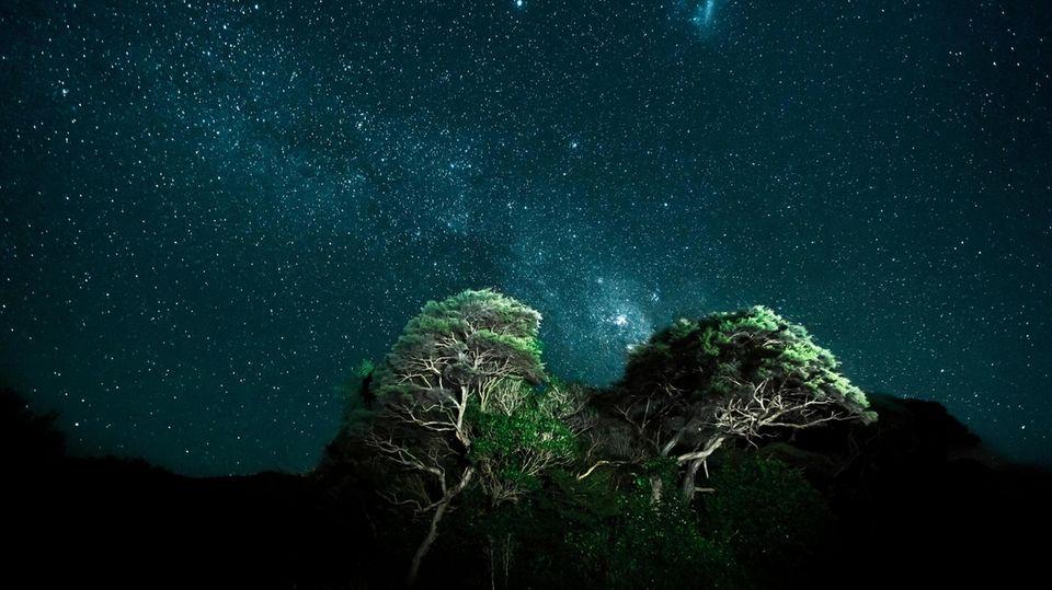 Der Nachthimmel über Neuseeland