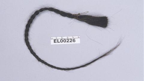 Die Wissenschaftler untersuchten die autosomale DNA aus einem Zopf des Häuptlings Sitting Bull und entwickelten dann eine Berechnungsmethode, um sie mit der DNA des Nachfahrenzu vergleichen