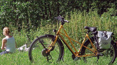 E-Bikes 2013: Die Sieger im Vergleichstest