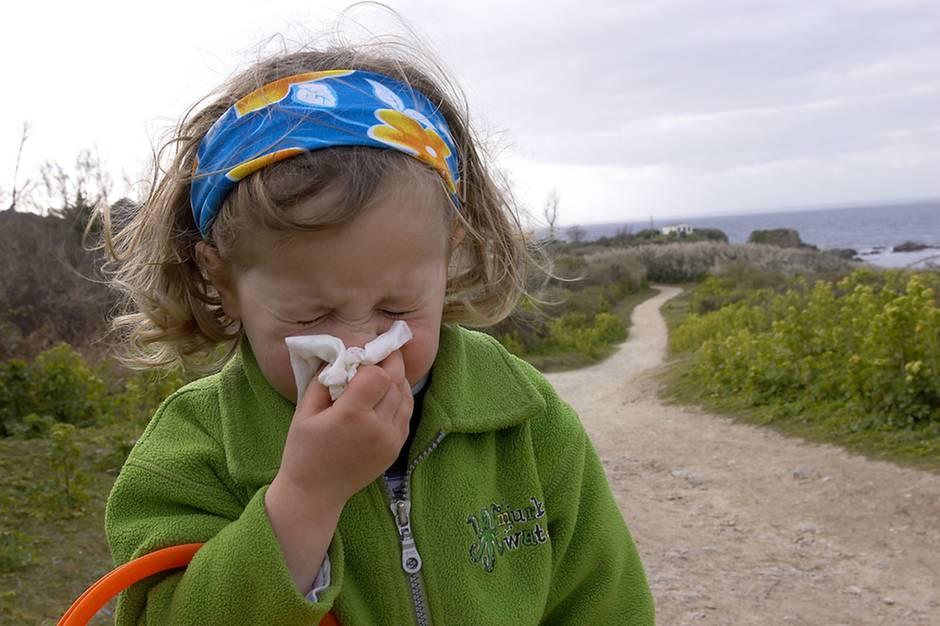 was tun gegen staub oder der kleine irobot kmpft unermdlich gegen den schmutz sie sind