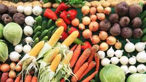 Eine gesündere Lebensweise ist einer der Gründe für eine fleischlose Ernährung