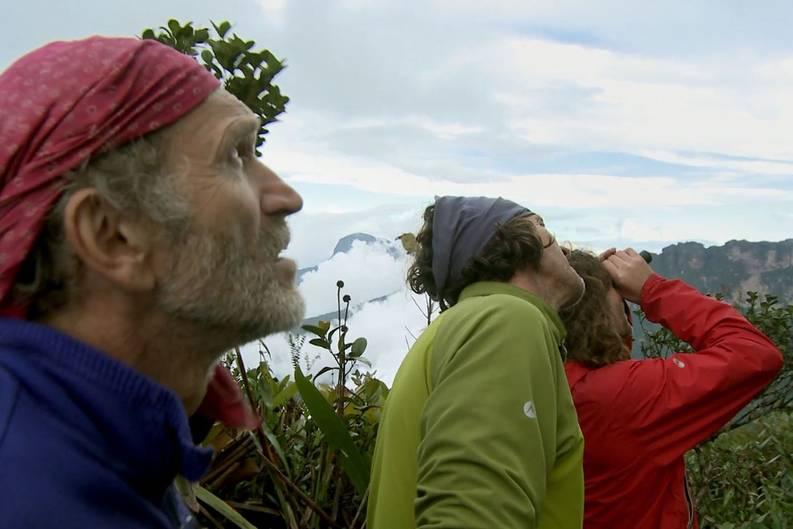 """Drei Freunde, die am Rande des Menschenmöglichen klettern. Sie machen sich auf den Weg nach Südamerika, um den knapp 3000 Meter hohen Tafelberg Roraima-Tepui zu bezwingen. Allen Gefahren zum Trotz wollen sie die Wand """"La Pora"""" auf einer neuen Route in Höchstgeschwindigkeit erklettern. Aus den spektakulären Bildern der Expedition ist der Film """"Jäger des Augenblicks"""" entstanden. In deutschen Kinos startet er am 25. April 2013."""