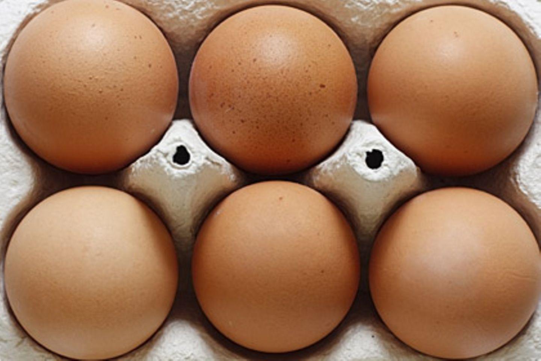 Zwei Supermarktketten haben Bio-Eier nach den Dioxinfunden vorübergehend aus dem Sortiment genommen