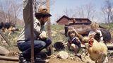 Kinder und Hühner - das war Dylans Welt in jenen Jahren abseits des Rock-Zirkus'