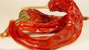 Capsaicin ist für die Schärfe der Chili verantwortlich