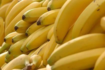 Schädlinge setzen Bananen sehr stark zu