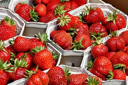 Erdbeeren sind noch immer häufig mit Pestiziden belastet