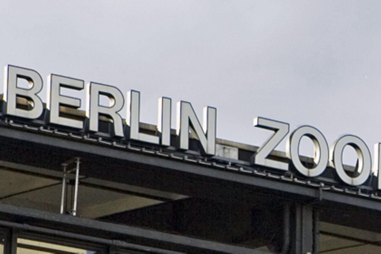 Am Berliner Bahnhof Zoo fand Mario Zöckler* sein späteres Opfer