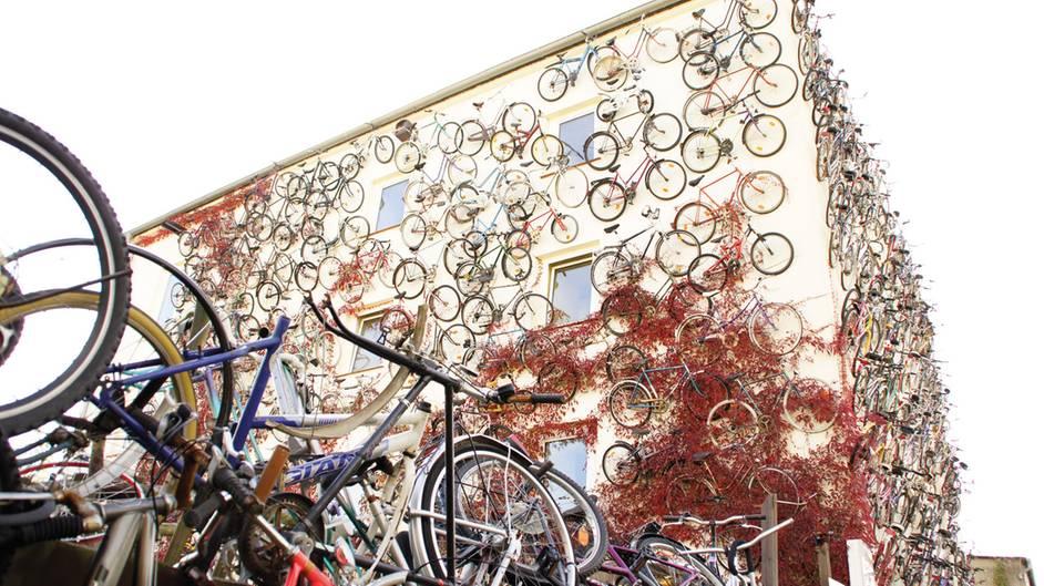 Mein Famoses Fahrrad Die Verrücktesten Räder Der Welt Sternde