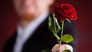 Blumen aller Art gibt es zum 100. Weltfrauentag