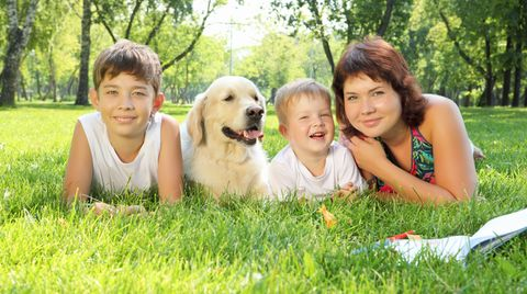 Tierhaarallergie: Schutz für übersensible Haustierbesitzer