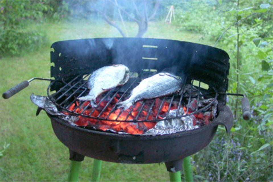 Eine Feuerschale mit Mini-Windschutz auf drei Beinchen: der Rundgrill