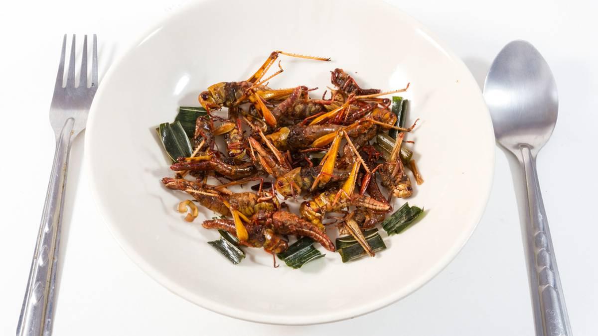 rezepte mit insekten beliebte gerichte mit grillen heuschrecken und mehlw rmern um probieren. Black Bedroom Furniture Sets. Home Design Ideas