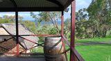 In der Hügellandschaft, die an die Toskana erinnert, gedeihen die Trauben des Weinguts d'Arenberg. Doch statt Zypressen wachsen im McLaren Vale knorrige Eukalyptusbäume