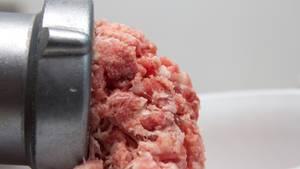 Im Hackfleisch fanden die Prüfer Keime und Salmonellen. Aber Bio-Produkte aus Discounter überzeugen.