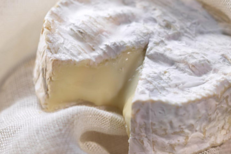 In Käse können verschiedene gefährliche Bakterien stecken