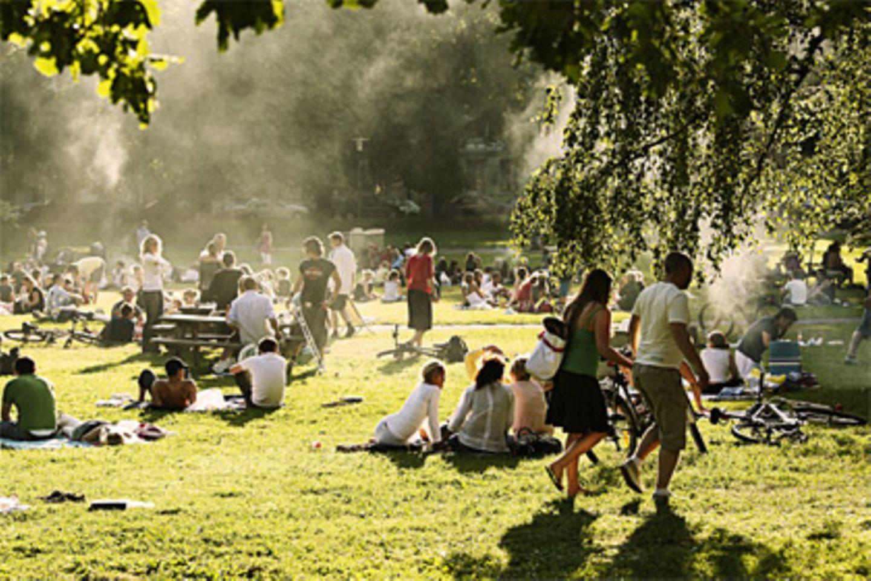Griller im Nebel - steigen die Temperaturen bricht auf vielen öffentlichen Grünflächen das Grillfieber aus
