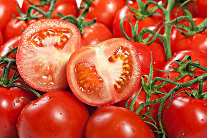 erbgut entschl sselt tomaten k nnten bald lecker werden. Black Bedroom Furniture Sets. Home Design Ideas