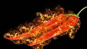 Scharf, schärfer, Chili-Schote: Kommt die Haut mir damit in Berührung, brennt es wie Feuer.