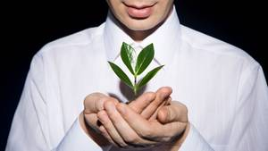 Unser Hausarzt staunt über die sensible und redselige Seite der Pflanzenwelt. Um den Ruf der Wildnis hören zu können, müsste er allerdings einen besseren Riecher haben