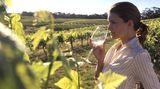 In den meernahen Weinanbaugebieten von South Australia herrscht ein ausgeglichenes Mikroklima, besser noch als im bekannten Barossa Valley. Denn durch die Nähe zum Pazifik verschont die kontinuierliche Meeresbrise die reifenden Trauben vor allzu großer Hitze im australischen Sommer