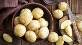 Kartoffeln  Kartoffeln sind eigentlich leicht zu lagern. Trotzdem muss man wenige Punkte beachten. Legen Sie Kartoffeln nie in den Kühlschrank, sondern suchen Sie einen dunklen, gleichtemperierten Ort. Am besten in der Vorratskammer. Kartoffeln sollten auch nicht unmittelbar neben dem Herd, unter der Spüle oder in der Nähe eines Fensters lagern. Denn Wärme lässt die Kartoffeln sprießen, während Kälte die Kartoffelstärke in Zucker verwandelt.