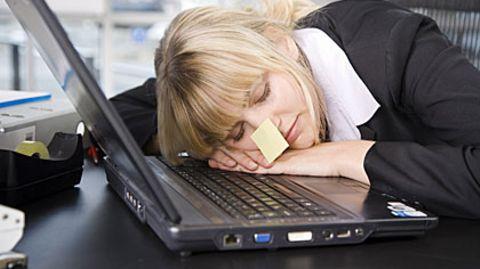 Der Evolution ist kein Fehler unterlaufen, als sie den Schlaf zur Gewohnheit werden ließ