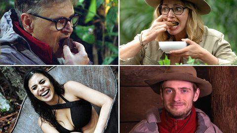 Dschungelcamp: Wer ist Ihr Favorit auf die Dschungelkrone?