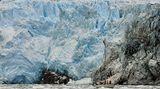 Elf Tage dauerte die Seefahrt durch die bewegten Gewässer bei Kap Horn, bis sie das Basislager, die Bucht Caleta Escandallo, Mitte März erreichten. Dort kalben die mächtigen Gletscher direkt ins Meer