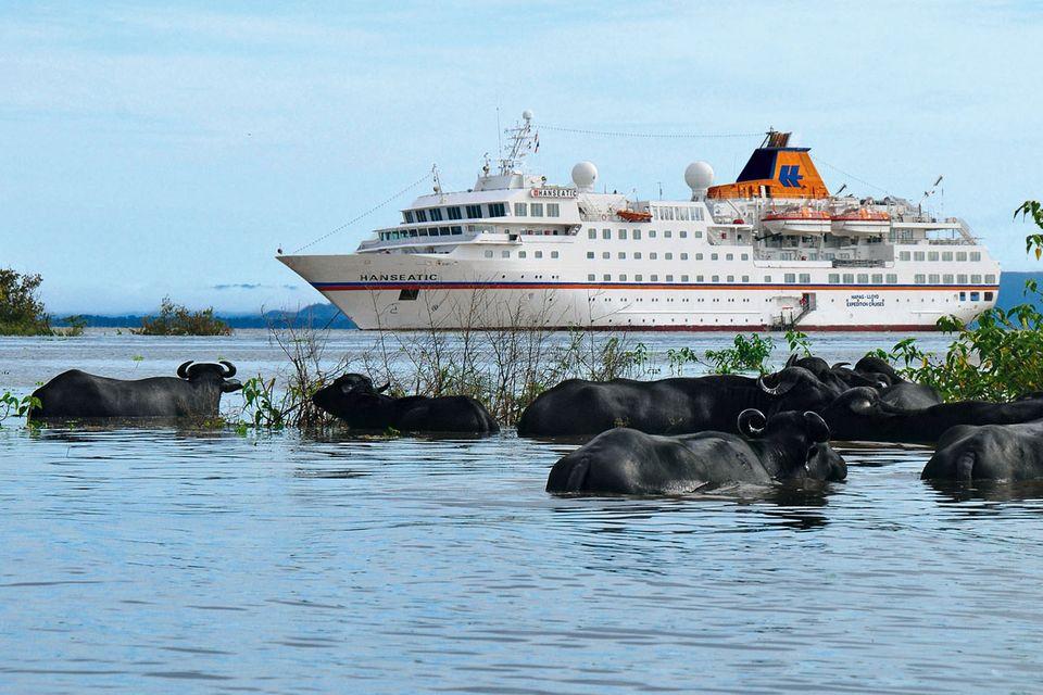 Kleine Kreuzfahrtschiffe: Hier bekommen Sie Klasse statt Masse
