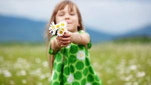 Auch wenn der Heuschnupfen Mama und Papa quält - vom Kind gepflückte Blumen bekommen einen Ehrenplatz in der Wohnung