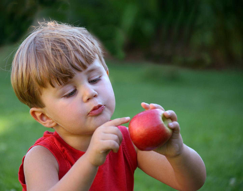 Geben Sie Ihrem Kind möglichst viele Obst- und Gemüsesorten - so entdecken Sie bestimmt etwas, was selbst einem kleinen Frischkost-Muffel schmeckt. Verstecken Sie das Grünzeug zerkleinert in Suppen, Soßen, Joghurts oder schneiden Sie es klein - als Knabbergenuss für zwischendurch