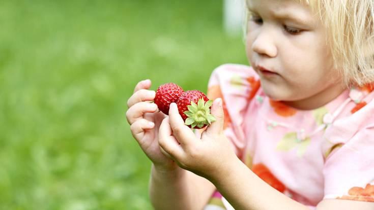 Ernähren Sie Ihr Kind ausgewogen mit reichlich pflanzlichen Lebensmitteln. Geben Sie ihm viel Obst, Gemüse und Getreideprodukte sowie in Maßen mageres Fleisch, Fisch, Eier und Milchprodukte. Verwenden Sie Fette sparsam, Butter oder Margarine als Streichfett und pflanzliche Öle zum Kochen und Braten und für Salate
