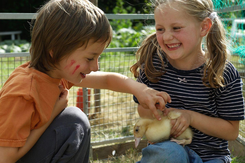 Kinder auf Bauernhöfen sind mehr Keimen ausgesetzt