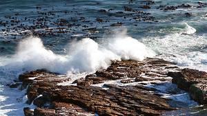 Das Meer speichert Kohlendioxid - doch es kann heute weniger aufnehmen als früher