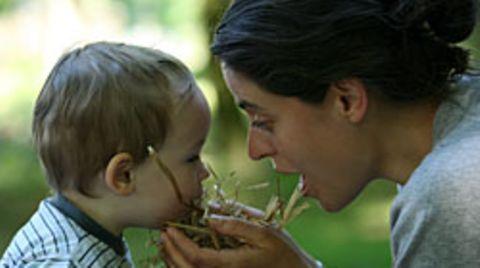 Ererbter Geruchssinn: Die Gene der Eltern bestimmen mit, was Kinder riechen