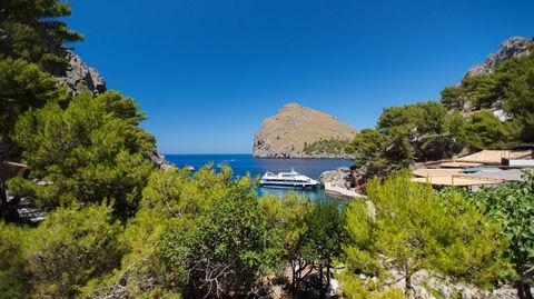 Auch die Urlaubsinsel Mallorca wird von der Schweinegrippe nicht verschont