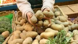 Kartoffeln: Ihre Schale ist mit Vorsicht zu genießen