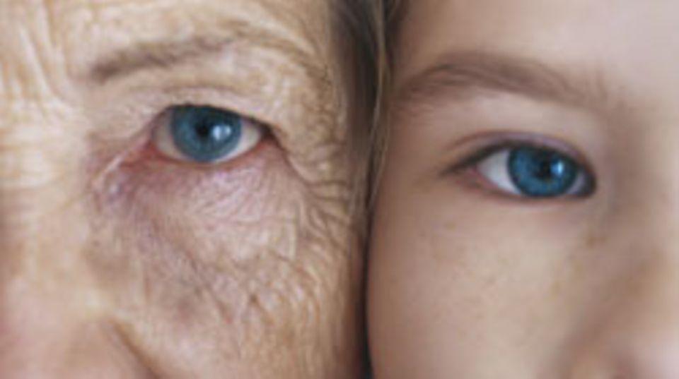 """Warum altern Menschen? Mit dieser Frage beschäftigt sich die Kieler """"Forschungsgruppe Gesundes Altern"""""""