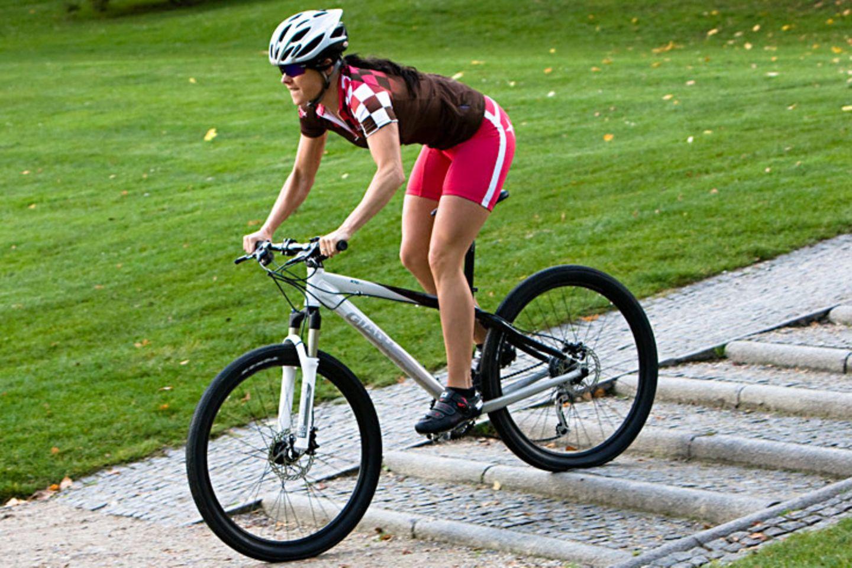 Bei bestimmten Sportarten empfiehlt sich ein Mundschutz, um die Zähne vor Verletzungen zu schützen, etwa bei Mountainbiking, Inlineskating, Skate- und Snowboarding, (Eis-)Hockey, Kampfsport und Reiten