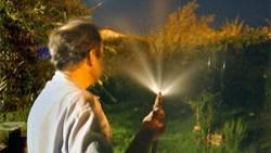 Beim Bewässern seines Gartens wurde ein australischer Rentner niedergeschlagen