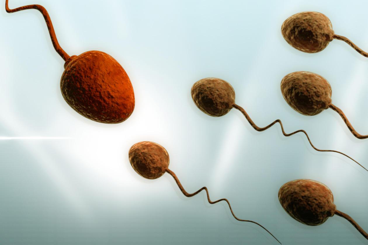 Reifer Mann produziert Sperma