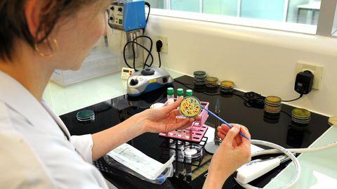 Viren können in Petrischalen gezüchtet werden. Sie vermehren sich in Zellkulturen