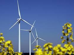 Ökofonds investieren nicht nur in erneuerbare Energien