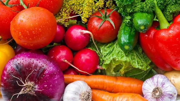 nhrstoffe bausteine fr ein gesundes leben