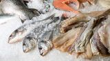 Es gibt Fischallergiker, die Süßwasserfisch besser vertragen als Salzwasserfisch. Ob das bei Ihnen zutrifft, sollten Sie aber nur unter ärztlicher Aufsicht ermitteln lassen, da Fisch-Allergene auch nicht durch Hitze zu zerstören sind