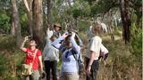 """""""Da oben sitzen jede Menge Papageien"""", zeigt Shayne seinen Gästen. Mit Schutznetzen über dem Kopf wappnen sich viele Urlauber gegen die Fliegen, Australiens lästigste Plage"""