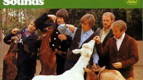 """Ein Meilenstein der Musikgeschichte: """"Pet Sounds von den Beach Boys"""""""